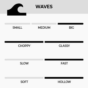GONG SURF 9'1 ZERO EPS