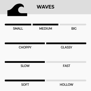 GONG SURF 100% FOIL 5'8 MATATA 3CS VERT