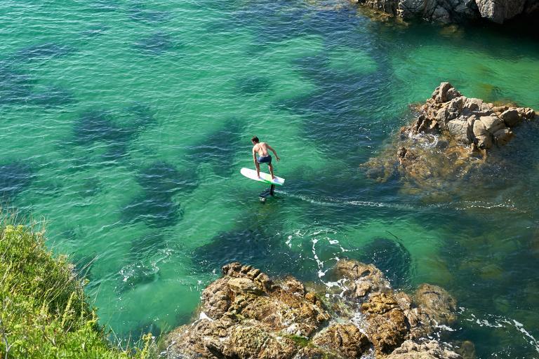 GONG SURF FOIL ALLVATOR CURVE ALU CARBON